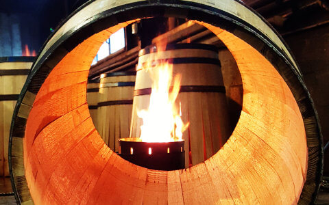 PRIVATE Half-day Tour from Charente – The vineyard of Cognac and its craft distilleries